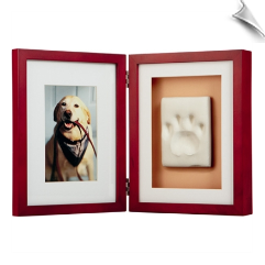 Pawprints Framed Desktop Kit