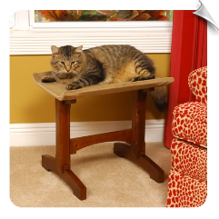 Single Seat Feline Furniture