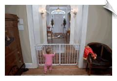 Auto-Lock Safety Gate