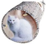 Cat Fun Tunnel - Large
