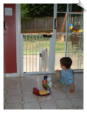 Lock-n-Block Sliding Door Gate by Cardinal