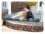 Indoor/Outdoor Pet Cushions