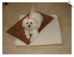 Pet Mats for Cedar Dog Houses