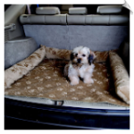 Pet Luxury SUV Pad and Bed