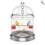 Bio Bubble Bird Bundle - Terra