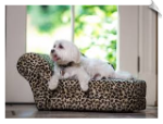 Furry Shaggy Chaise - Leopard