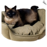 Cat Beds, Carriers & More